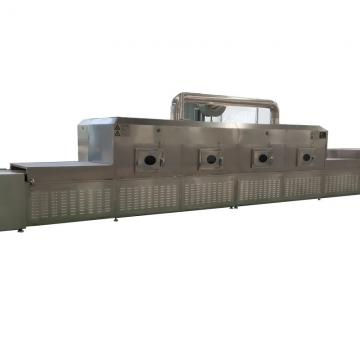 Tunnel Microwave Fast Food Induction Heating Equipment