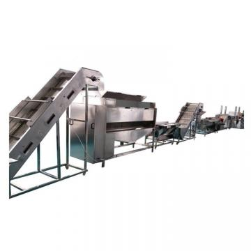 Belt Type Frozen Food Production Line
