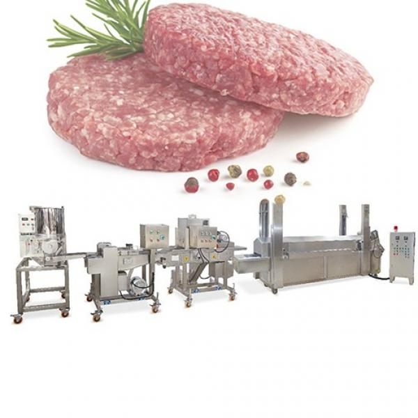 Disposable PS Foam Plastic Lunch Box Thermofrming Making Machine Hamburger Fast Food Box Vacuum Forming Machine Production Line