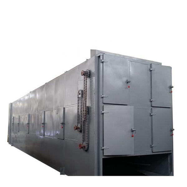 Tenebrio Molitor Continuous Microwave Belt Dryer