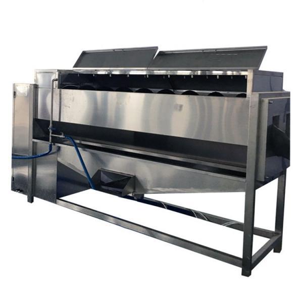 Frozen Vegetable Production Line/Food Processing Machine/Okra Frozen Production Line Made in China